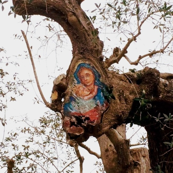 Madonna ulivo