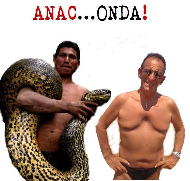 ANAC…ONDA!